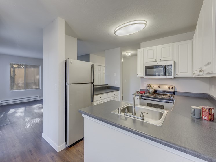 gourmet kitchens with dishwasher and disposal