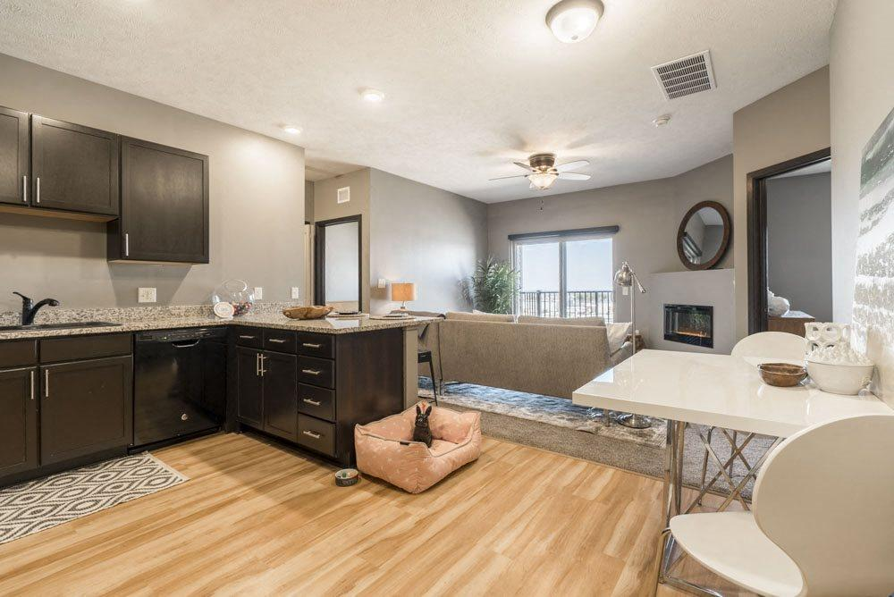 Open floor plan kitchen and living room at The Flats at 84 in southeast Lincoln 68516
