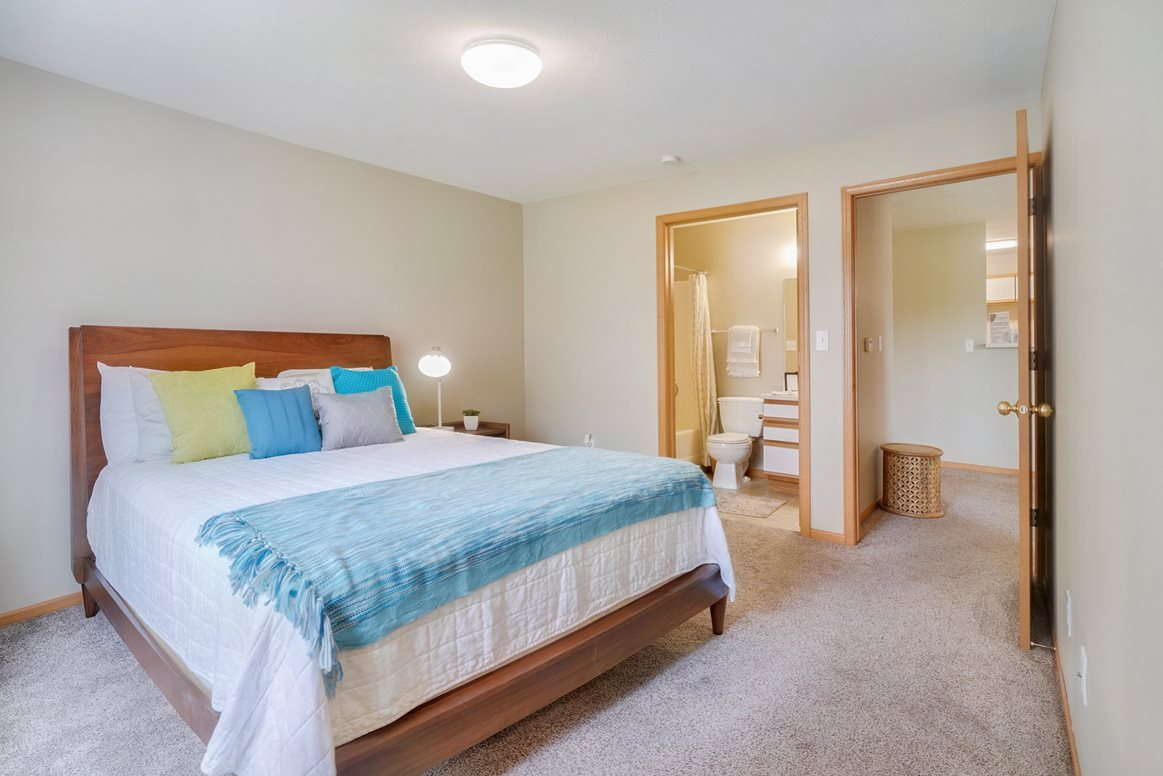 Large ,aster bedroom with connected bathroom and overhead light