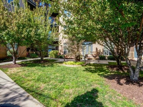 Landscaping at Elizabeth Square Apartments in Charlotte, NC