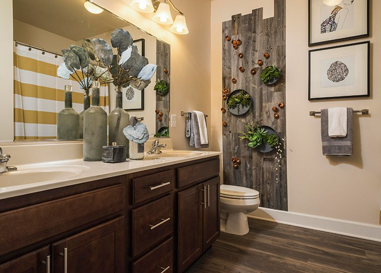 Bathroom Accessories at Abberly at Southpoint Apartment Homes by HHHunt, Virginia, 22407