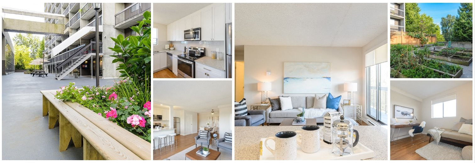collage of living room, kitchen and property grounds