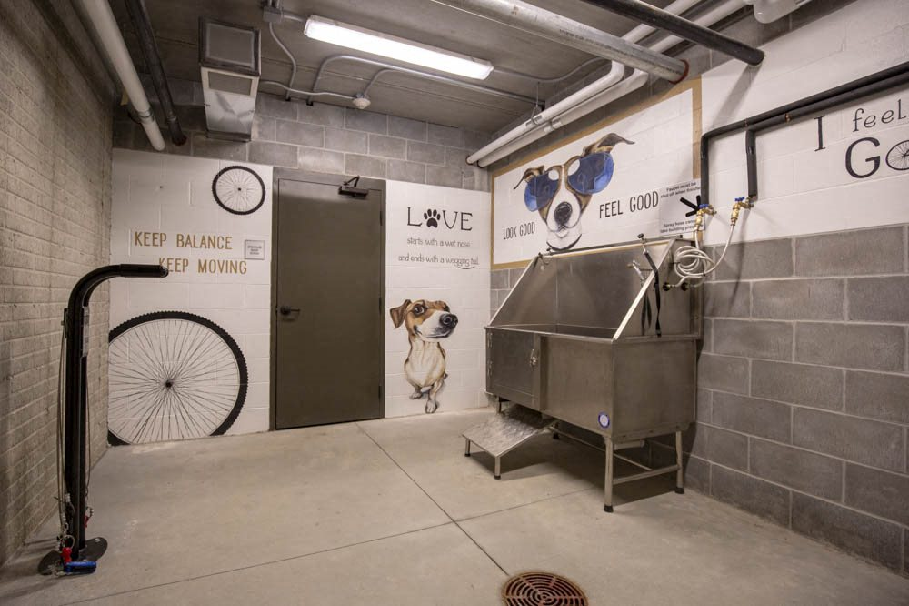 Bike repair station and pet wash station at North Pointe Villas luxury apartments in North Lincoln NE 68521