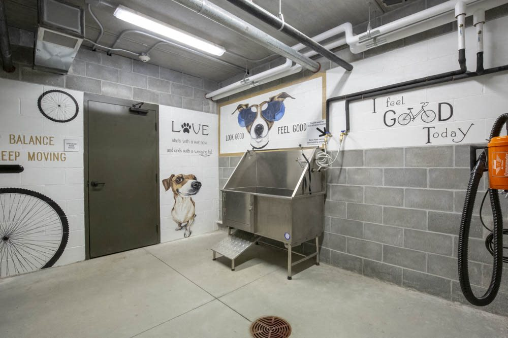 Pet wash station with hairdryer at North Pointe Villas luxury apartments in North Lincoln NE 68521