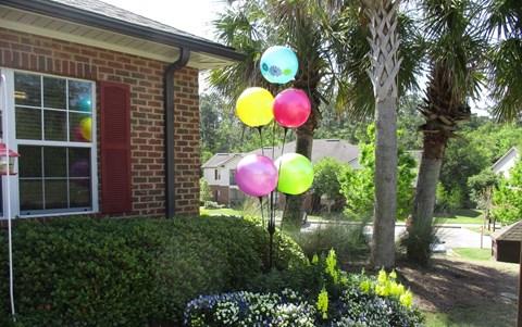 cheerful balloons outside office windows