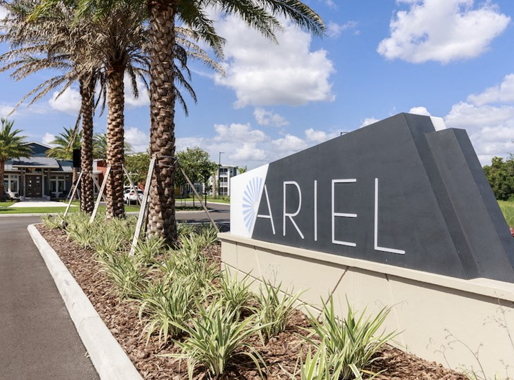 Ariel entrance sign with beautiful palm trees