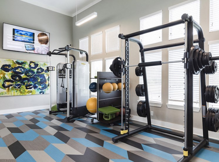 squat rack  with plates and medicine ball rack