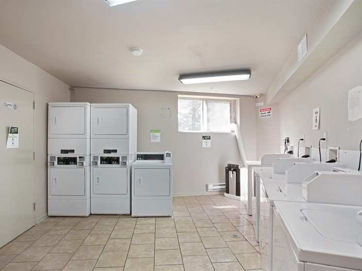 Apartment Laundry in Pangea Oaks