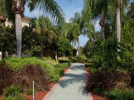 Lush greenery at L'Estancia Apartments in Sarasota