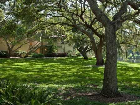 Lush, green landscaping at L'Estancia Apartments