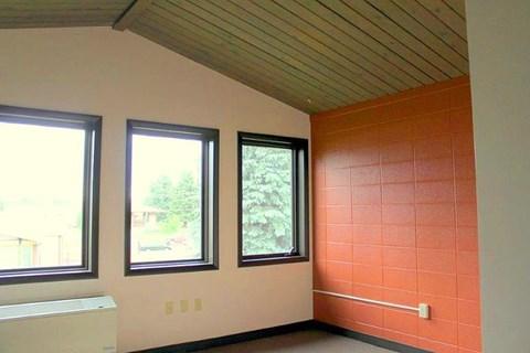 interior roof and windows