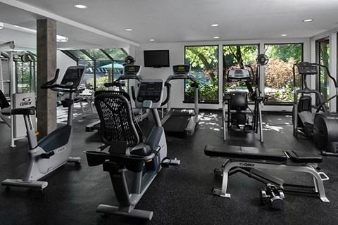Brand New Fitness Center, Gym