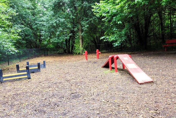 Dog-Park-with-Agility-Equipment-Sumter-Square-Apartments-web