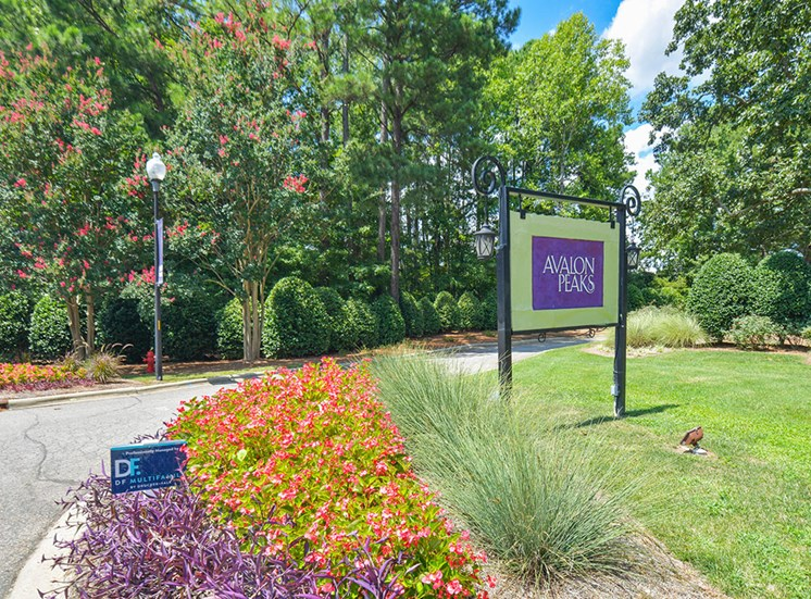Avalon-Peaks-Apartments-Apex-NC-Sign-at-Entrance