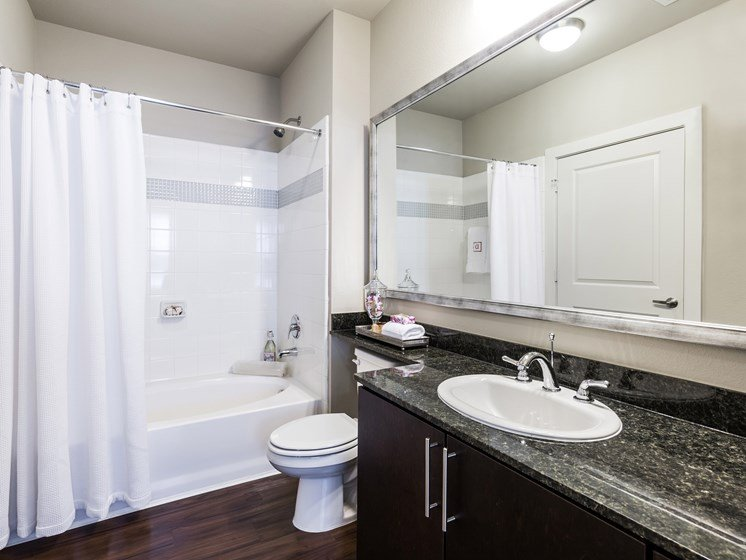 Master Baths Featuring Oval Garden Tubs at Grand at the Dominion, San Antonio, TX 78257