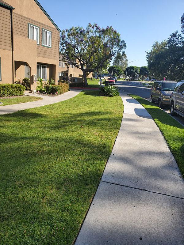 Sidewalk near buildings