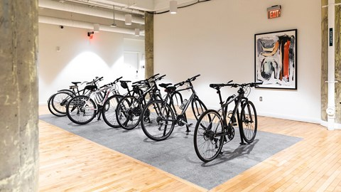 Bicycle at The Assembly, Michigan, 48216