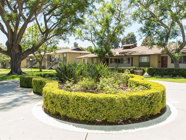 Ventura Terrace Greenery