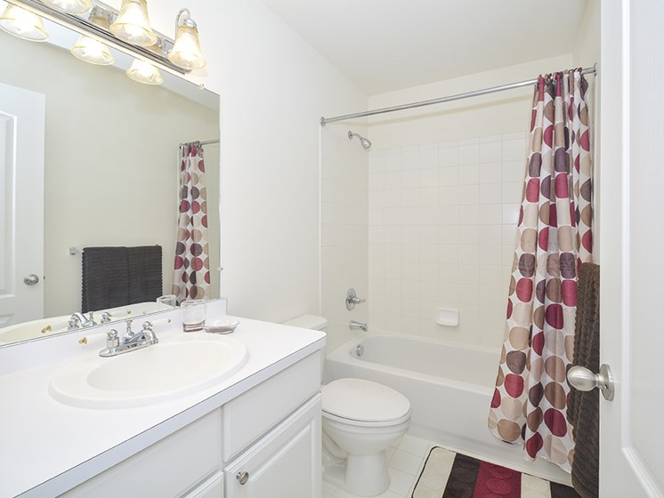 Full-Sized Bathroom with Shower and Tub