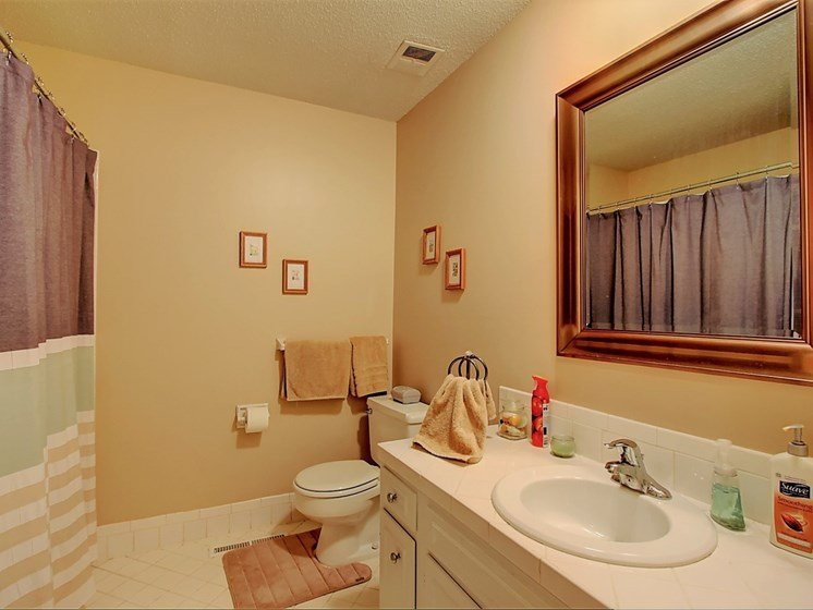 Image of bathroom with large vanity and mirror