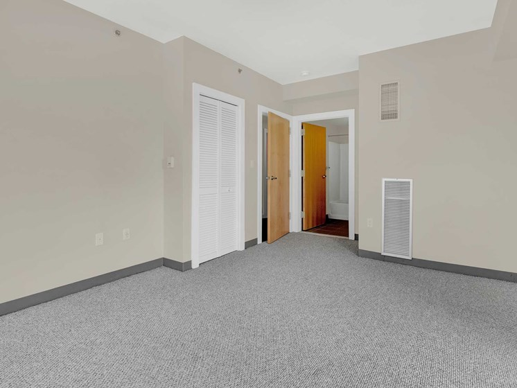 Large bedroom with closet and bathroom