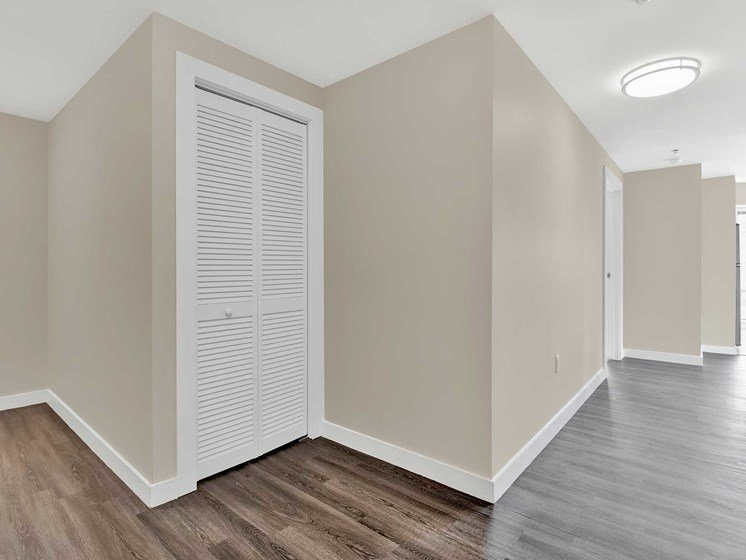 Hallway and storage space with modern plank flooring