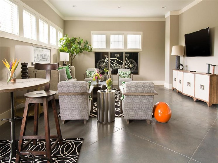 Social Gathering Areas for Residents to Relax with Seating Areas and Flat Screen TV. Decorated with Gorgeous Artwork and Funky Carpets at Ansley at Roberts Lake Apartment Homes, Arden, NC, 28704