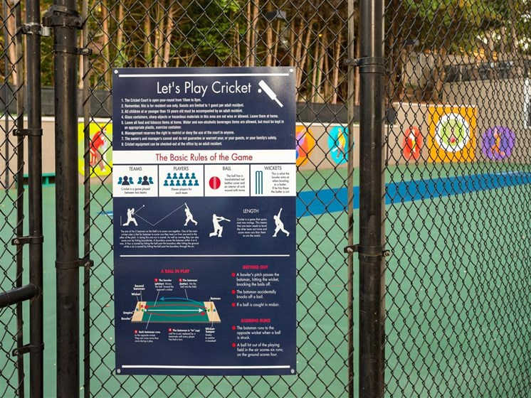 Enjoy Our Outdoor Lighted Cricket Court at Park Summit Apartments, Decatur, GA 30033