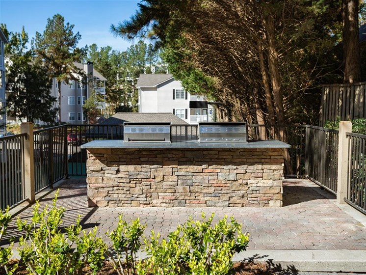Courtyard Grilling and Social Areas at Park Summit Apartments, Decatur, GA 30033