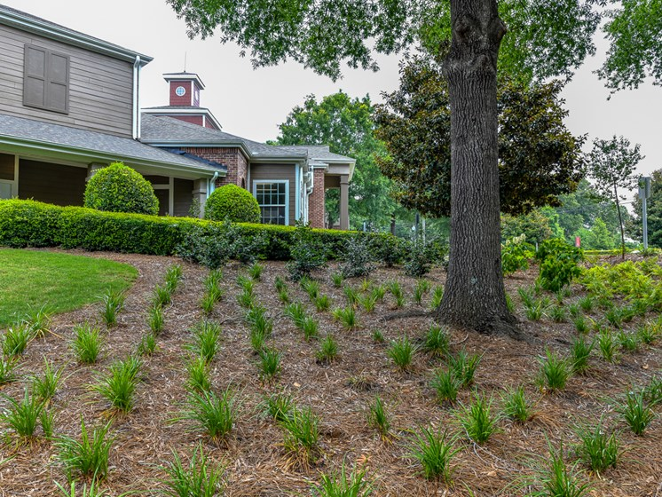 Lush Courtyards With Plantation at Polos at Hudson Corners, Greer, SC, 29650