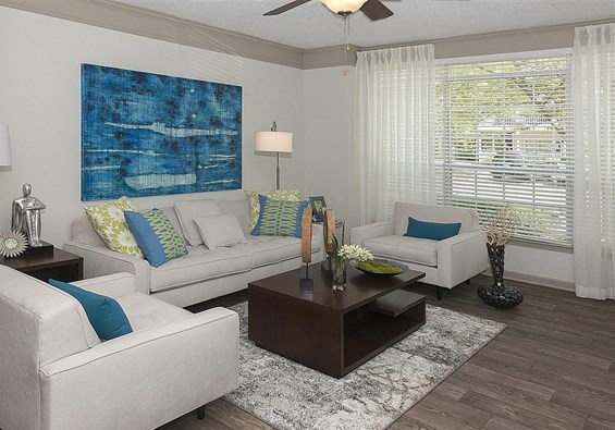 Cozy Living Room at St. Andrews Apartment Homes, Georgia