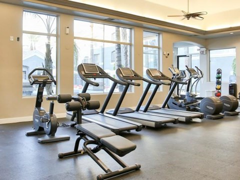 The Highland Apartments Fitness Center cardio equipment