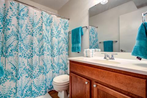 bathroom: sink, toilet, and shower
