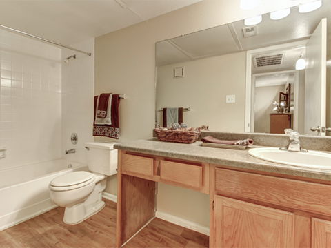 Bathroom with vanity countertop and soaking tub/shower
