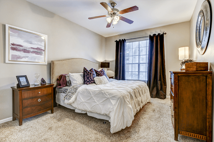 Second bedroom with large window, ceiling fan, and plush carpeting