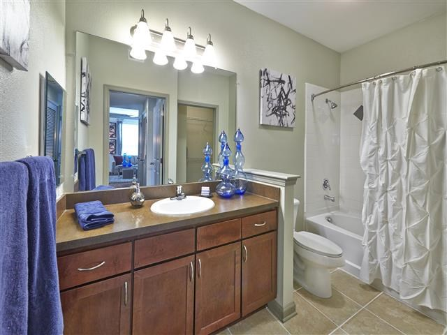 Bathroom with framed mirror and soaking tub/shower