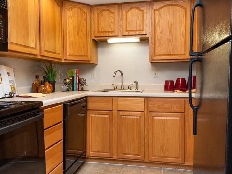all black appliances in St Louis Apartments