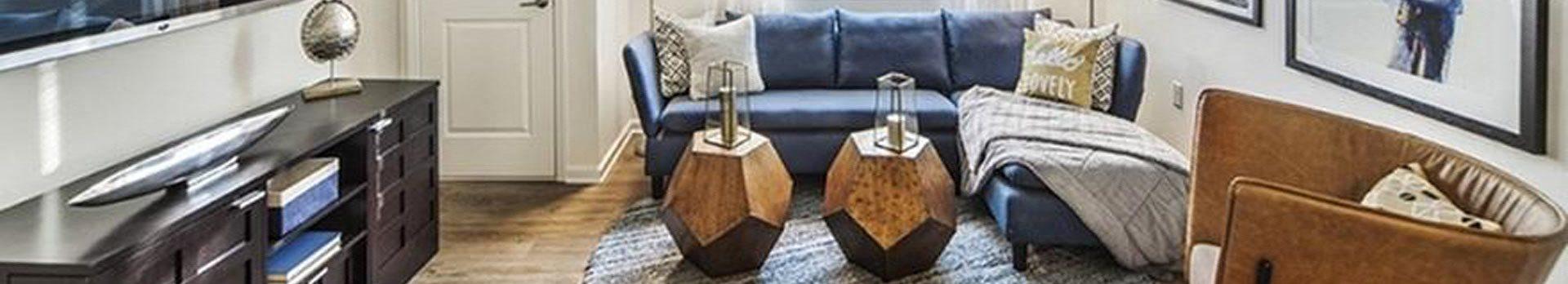 furnished apartment model living room