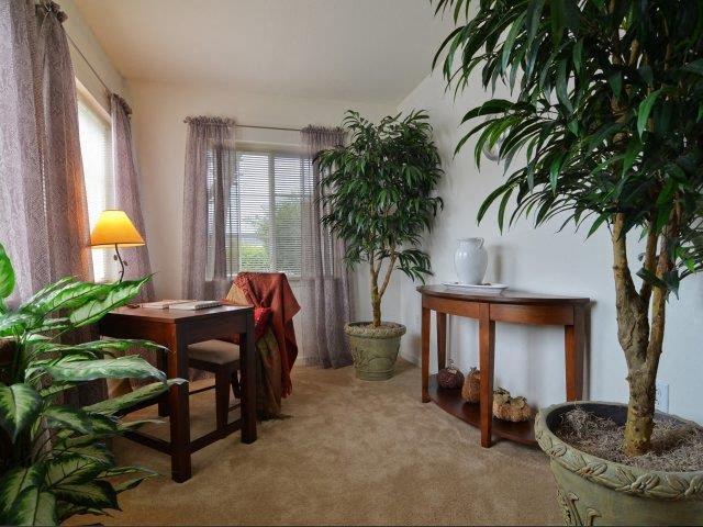 Patio at River Landing Apartments, Myrtle Beach, 29579