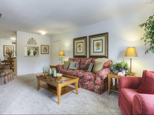 Classic Collection Living Room at Ascot Point Village Apartments, Asheville, NC, 28803
