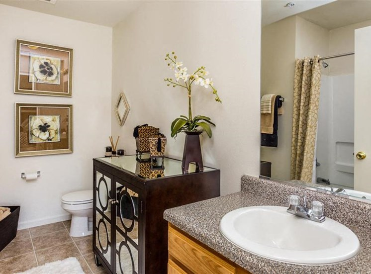 Faux-Granite Countertops at Eagle Point Village Apartments, Fayetteville, NC, 28314