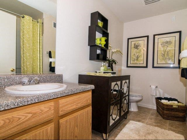 Spacious Bathrooms at Cedarcrest Village Apartments, Lexington, 29072