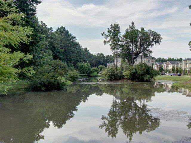 Beautiful Surroundings at Boltons Landing Apartments, Charleston, 29414