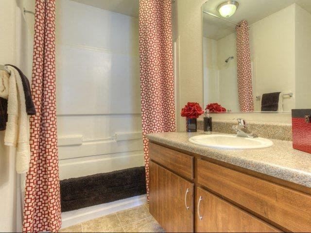 Master Bathroom at Berrington Village Apartments, Asheville, NC, 28803