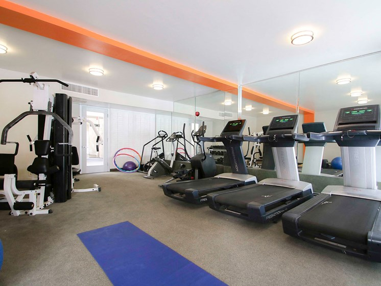 Fitness center including high efficiency treadmills and free weights.