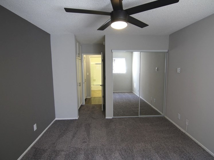 View of bedroom with overhead ceiling fan, new carpet and nice accent wall.