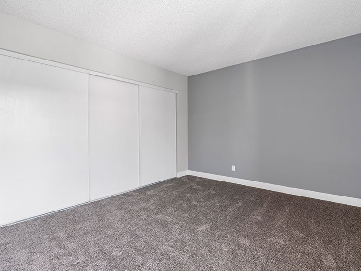 Carpeted bedroom with private closets and accent wall.