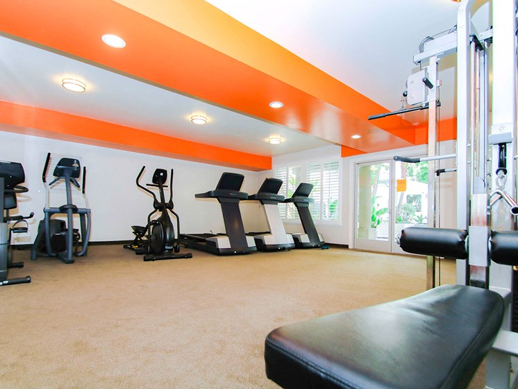 Fitness Center With Treadmills and Weight Machines.