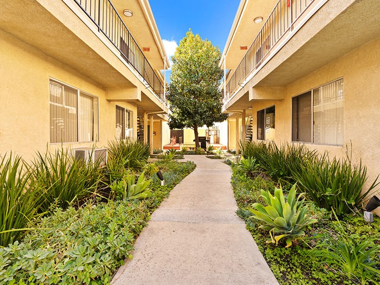 Drought resistant landscaping and barbeques in each courtyard.