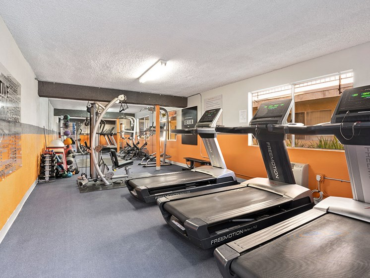 Multiple gyms with treadmills, machines, and free weights.
